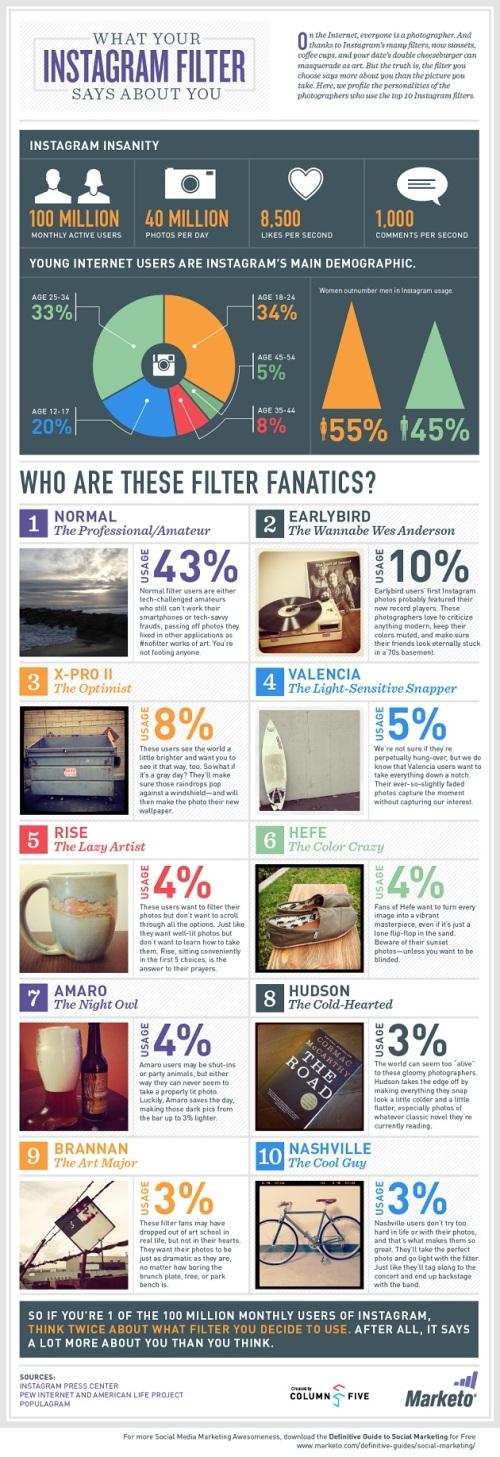 Infografica Profilo Utente Instagram